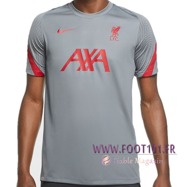 Training T-Shirts FC Liverpool Gris 2020/2021