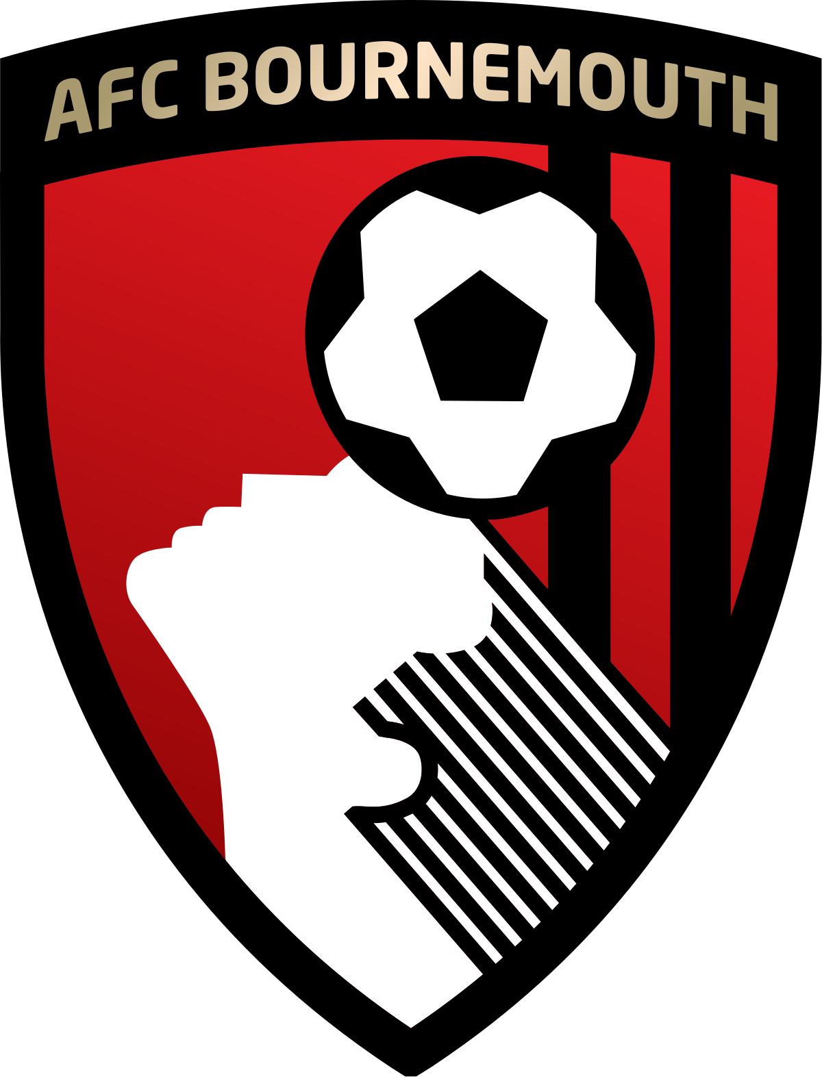 AFC Bournemouth (Enfant)